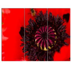 DesignArt 'Garden in Full Bloom on Summer Day' 3 Piece Photographic Print on Wrapped Canvas Set