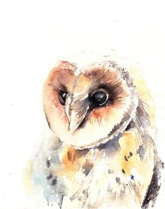 Barn Owl Bird Watercolor Painting Art Print, Watercolour Bird, Wall Art, Bird Art
