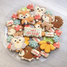 Ideas Baby Shower Cookies For Boy Fun Baby Girl Shower Themes, Baby Shower Fun, Baby Shower Decorations, Baby Showers, Fancy Cookies, Cute Cookies, Cupcakes, Galletas Decoradas Baby Shower, Woodland Animals