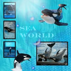 Sea World layouts