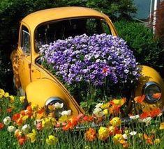 Des voitures recyclées en jardinières géantes..
