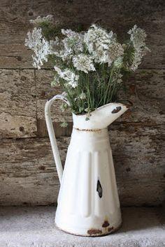 Bouquet de fleurs de carotte dans une cruche émaillée