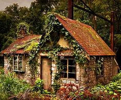 Tiny cabin in the woods. I would so live there!