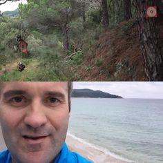 Erster Lauf des neuen Jahres in äußerst. abwechslungsreicher Umgebung  Trail Weinberge und Beach - #like ! Offenbar wird zudem scharf geschossen oder warum hängen Zielscheiben im Wald rum  zum Glück habe ich mich kleidungstechnisch SEHR deutlich von den Waldbewohnern abgehoben und hatte kein Fadenkreuz auf dem Rücken! Nix passiert - das Laufjahr 2016 kann so weitergehen  #trailrunning #beachrun #irun #laufen #jogging #running #trainhard #2016resolutions #juststart #runtheworld #marathon…