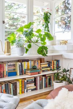 Books and plants in a white shelf