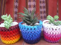 MAcetas crochet Crochet Diy, Ideas Geniales, Terracotta Pots, Cactus Plants, Fun Crafts, Your Favorite, Craft Projects, Planter Pots, Invitations