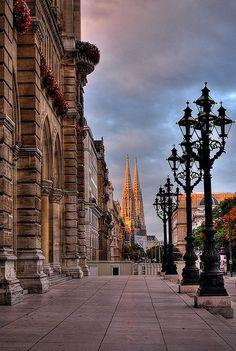 Votivkirche -Vienna - Austria (von pedro lastra)