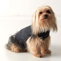 Tweed Dog Sweater - A cozy layer for cooler weather, with a turtleneck and handknit details.