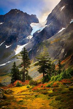Top Of Cascade Pass, Washington
