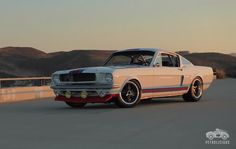 Ford Mustang - Martini Racing