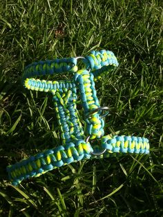 Paracord Harness and Collars- Check out my new Etsy store! http://www.etsy.com/shop/TheDomesticZoo