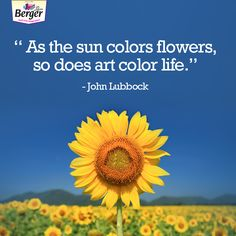 80 Best Colour Quotes Images Color Quotes Art Quotes Are You Happy