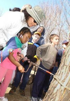 Maple Tapping with the Family Chicago, IL #Kids #Events