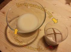 conversione pasta madre licoli
