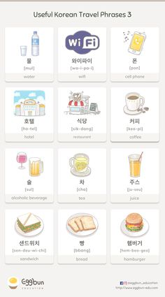 ✈️Useful Korean Travel Phrases -3 Chat to Learn Korean with Eggbun!