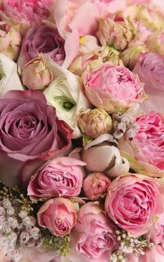 blumen-floral-bluht-haufen-straus-schnittblumen-getrocknete-blumen-summ/ delivers online tools that help you to stay in control of your personal information and protect your online privacy. Pretty Flowers, Pink Flowers, Pink Roses, Purple Peonies, White Peonies, Summer Flowers, White Roses, Dried Flowers, Paper Flowers