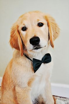 lookin dapper young fellow