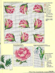 .-de-X-roses-daltres-flors...