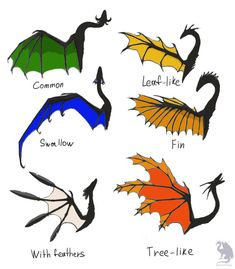 Dragon wings types by Flying-With-Dragons on DeviantArt flies butterfly frogs Mythical Creatures Art, Mythological Creatures, Magical Creatures, Creature Concept Art, Creature Design, Creature Drawings, Animal Drawings, Fantasy Dragon, Fantasy Art