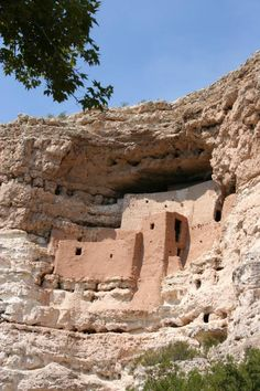 This is Montezuma's Castle. It's located at the Montezuma national monument park. The structure is actually only named for Montezuma. In reality it was built and abandoned 40 years before he was born. This is sort of a day trip along with Sedona.