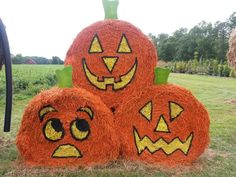 "Love this trio of ""pumpkins."" Reckon the bottom ones are worried about the one on top?"
