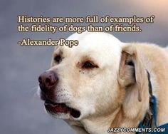 quotes about your dog | Most Raves Least Raves Oldest Newest