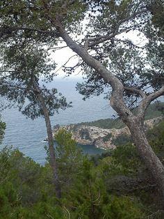 The walk from Santa Eulalia to Cala Llonga