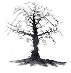 Can you see 10 faces in the tree !!