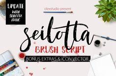 Seilotta Brush Script  by Rabbittype on Creative Market