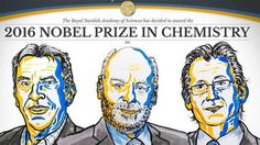 Nobel da Química para os criadores das mais pequenas máquinas moleculares | Portal Elvasnews