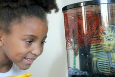 {Saturday Sights} Meet Sparkle The Betta Fish