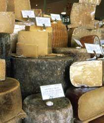 Hard (Aged) Cheeses