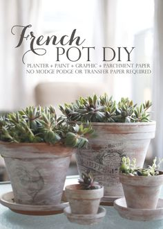 french country flower pots - Google Search