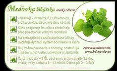 Glycemic Index, Dieta Detox, Wellness, Natural Medicine, Natural Health, Planer, Cooking Tips, Cantaloupe, Mojito