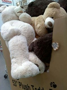 I want one of these giant teddy bears from Costco! Idk if they sell it at mine anymore though😭 Huge Teddy Bears, Giant Teddy Bear, Love Bear, Big Bear, Costco Bear, Bear Tumblr, Giant Stuffed Animals, Stuffed Bear, Bear Valentines