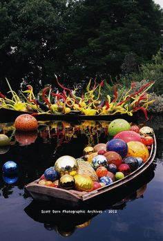 This was a photo I shot of one of the chihuly sculptures  at the Dallas arboretum