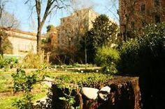 Bilderesultat for orto botanico di brera
