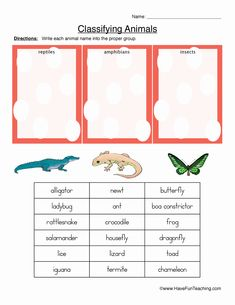 Animal Worksheets, Preschool Worksheets, Classifying Animals, Main Idea Worksheet, Reptiles And Amphibians, Writing, Homeschooling, Insects, Unique