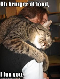 Awwww...This is how my cat Tiger treats me after I give her an extra-special treat.