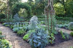 proactive fall vegetable-garden cleanup, with chanticleer's david mattern