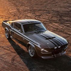 Ford Mustang Classic, Ford Mustang Shelby Gt500, Ford Classic Cars, Ford Shelby, Best Muscle Cars, Car Show, Cars Motorcycles, Dream Cars, Super Cars