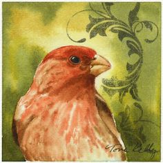 Mini Watercolor House Finch by Toni Kelly