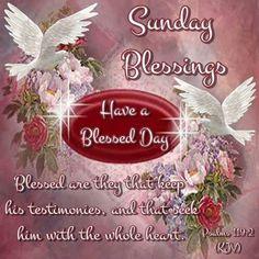 Good Sunday Morning, Sunday Morning Quotes, Friday Saturday Sunday, Morning Rain, Early Morning, Happy Sunday Quotes, Blessed Quotes, Sunday Greetings, Sunday Wishes