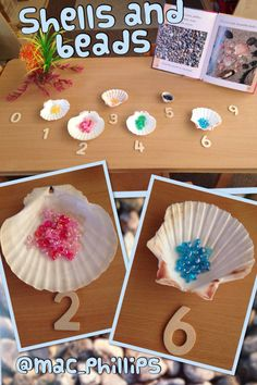 Shells and beads for our 'transporters' Preschool Arts And Crafts, Preschool Math, Math Activities, Frozen Activities, Sharing A Shell, Maths Eyfs, Maths Area, Math Challenge, Under The Sea Theme