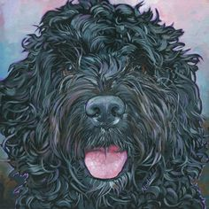 """Daily Paintworks - """"Portuguese Water Dog"""" - Original Fine Art for Sale - © Nadi Spencer"""