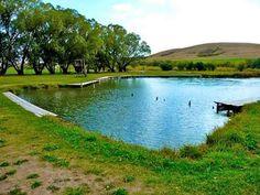 Gigantic Warm Springs, Montana - Hotspringsfinder/Courtesy of Cheapism