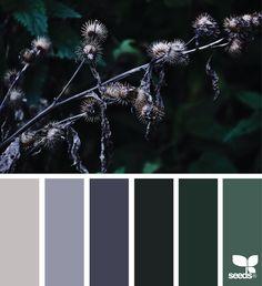 {nature tones} image via: @mijn.grid