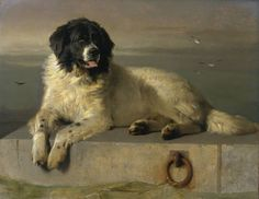 Sir Edwin Henry Landseer, 'A Distinguished Member of the Humane Society' exhibited 1838, Tate Gallery, London