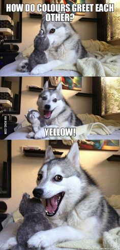 Pun Husky, pls. yellow!.