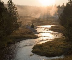 Yellowstone national park: Early Morning on the Firehole    ... the first (and possibly only!) calming thing I've seen today